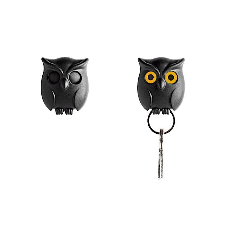 Night Owl Key - QL10195